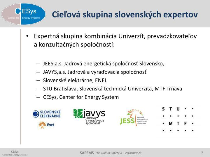 Cieľová skupina slovenských expertov