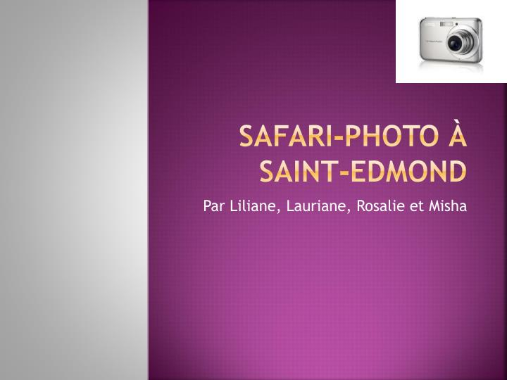 Safari photo saint edmond
