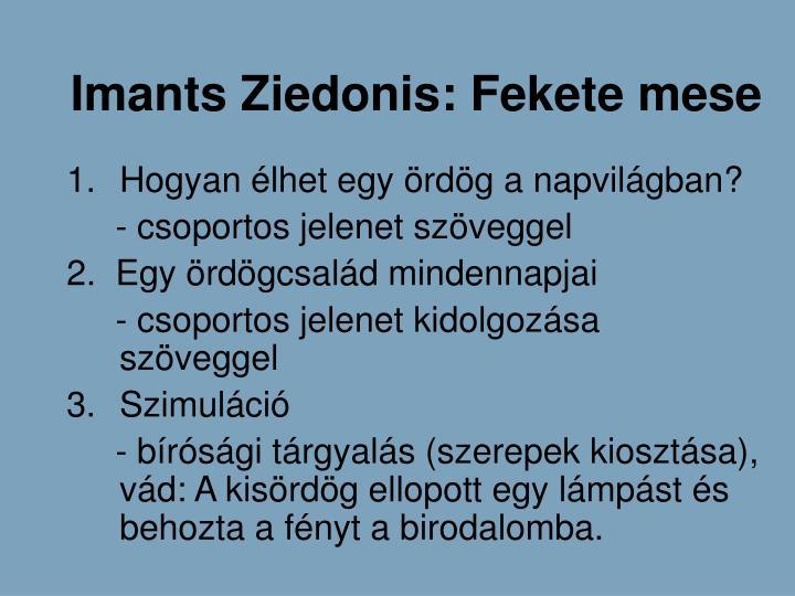Imants Ziedonis: Fekete mese
