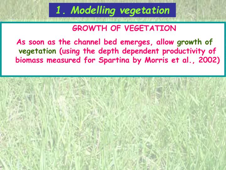 1. Modelling vegetation