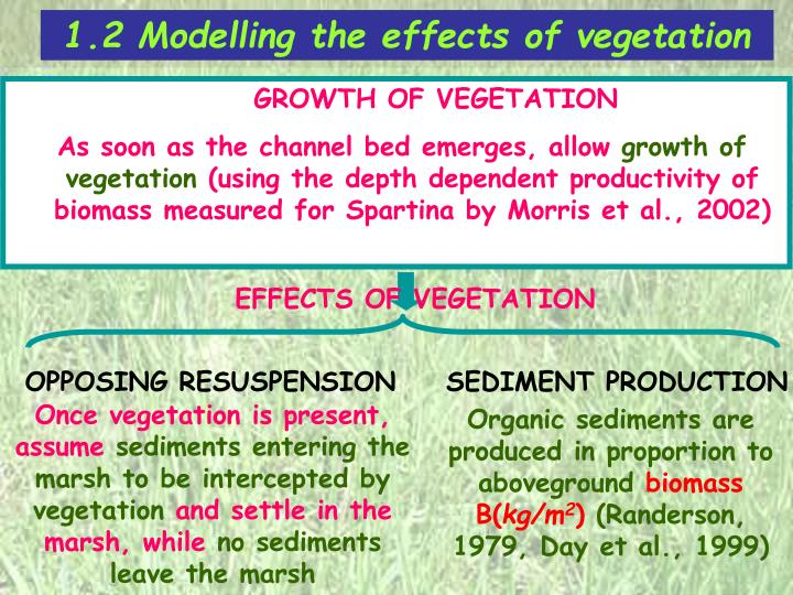 1.2 Modelling the effects of vegetation