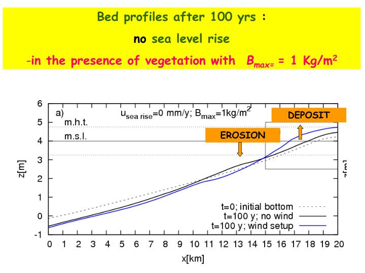 Bed profiles after 100 yrs