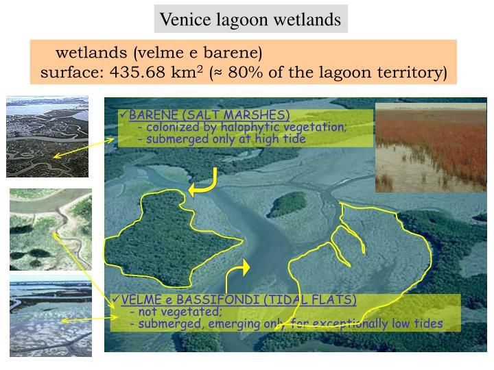 wetlands (velme e barene)