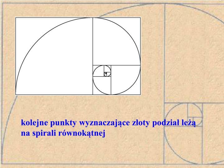 kolejne punkty wyznaczające złoty podział leżą na spirali równokątnej