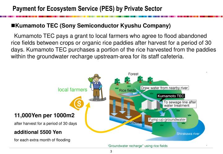 Payment for ecosystem service pes by private sector