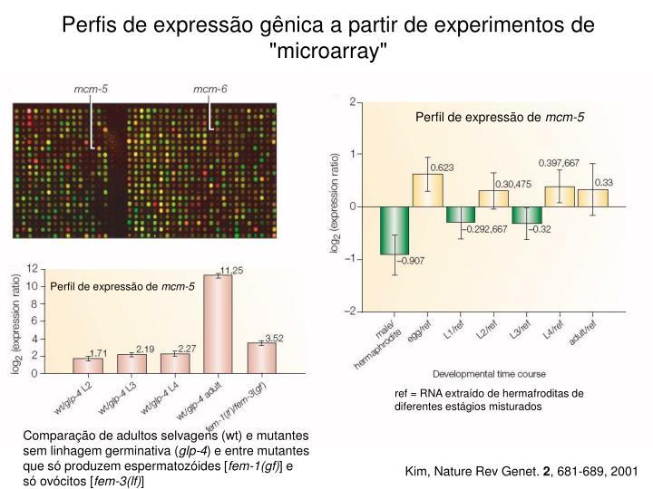 """Perfis de expressão gênica a partir de experimentos de """"microarray"""""""