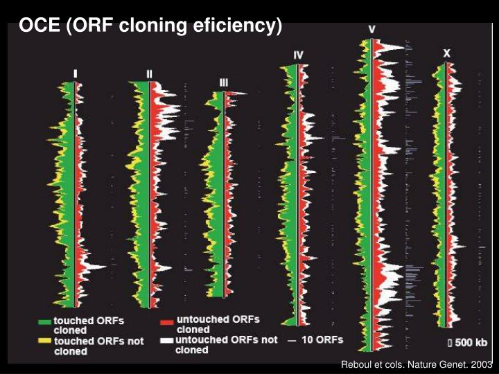 OCE (ORF cloning eficiency)