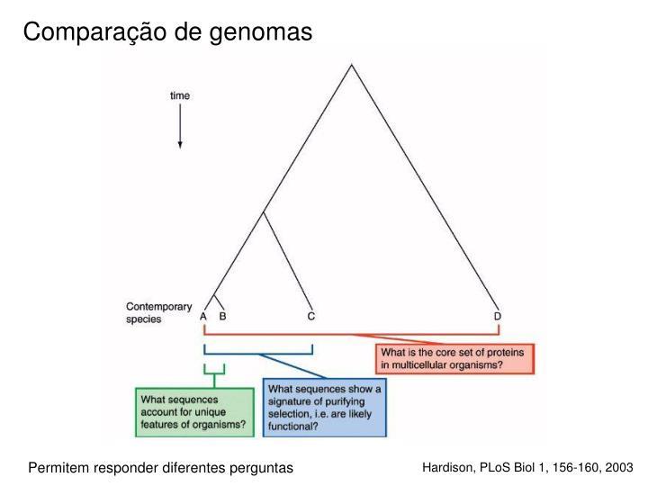 Comparação de genomas