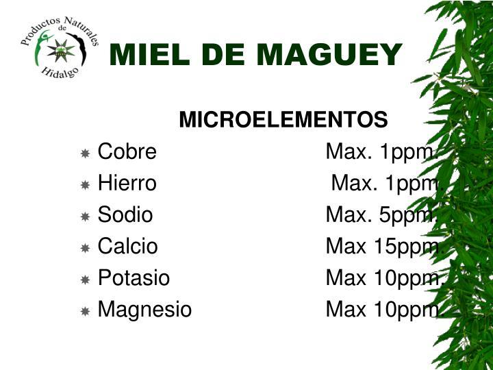 MIEL DE MAGUEY