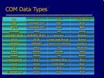 com data types1