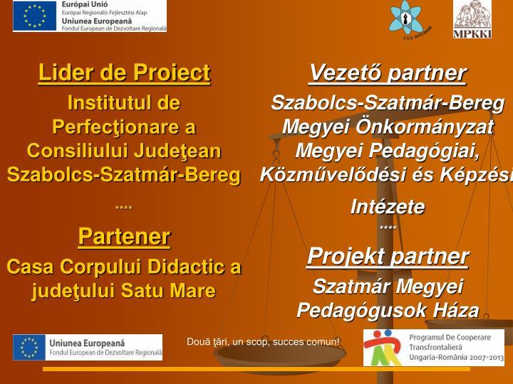 Lider de Proiect