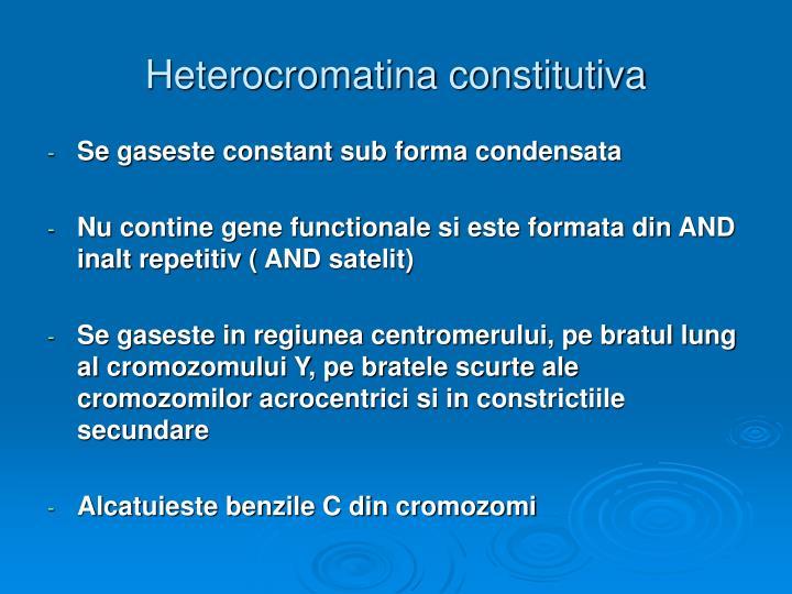 Heterocromatina constitutiva