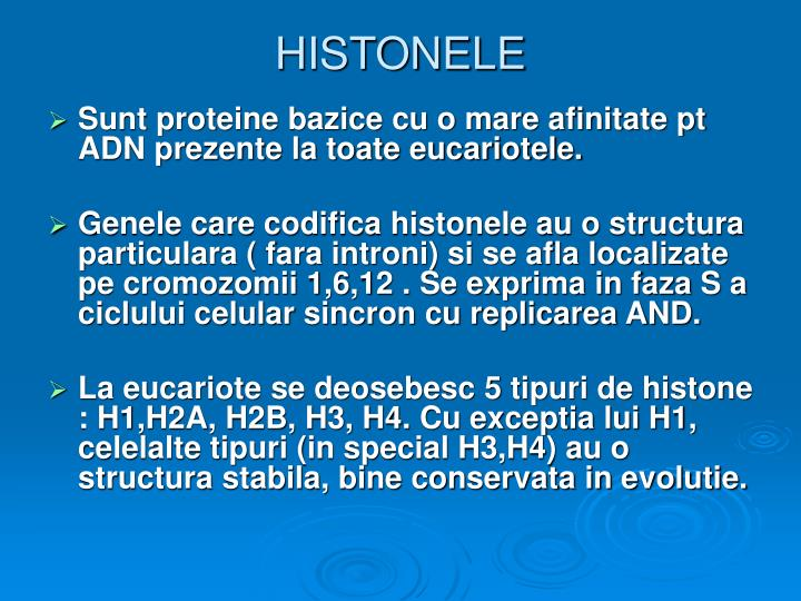 HISTONELE