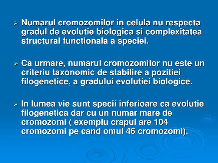 Numarul cromozomilor in celula nu respecta gradul de evolutie biologica si complexitatea structural functionala a speciei.