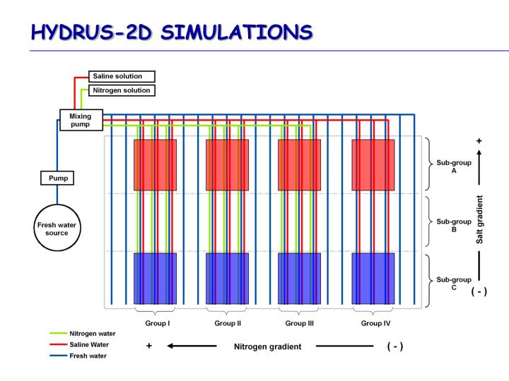 HYDRUS-2D SIMULATIONS