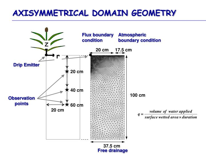 AXISYMMETRICAL DOMAIN GEOMETRY