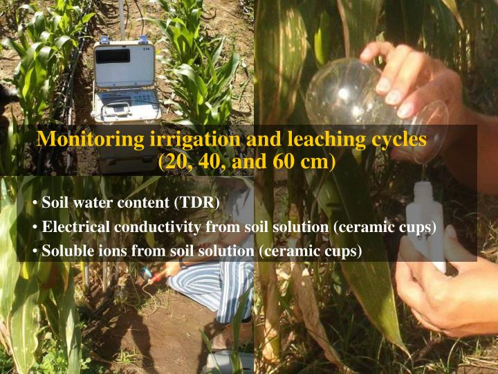 Monitoring irrigation and leaching cycles
