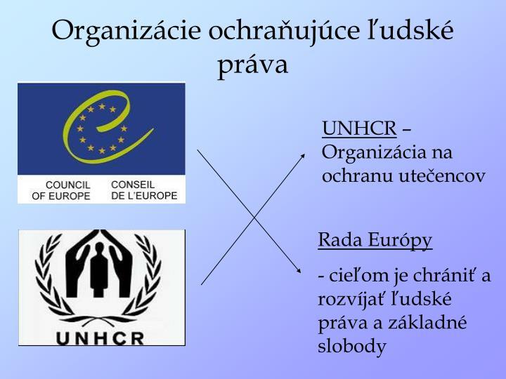 Organizácie ochraňujúce ľudské práva