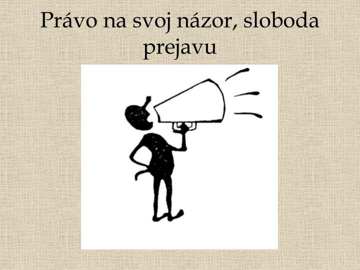 Právo na svoj názor, sloboda prejavu