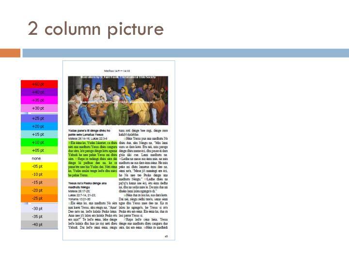 2 column picture
