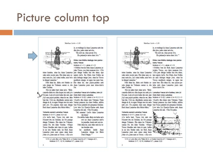 Picture column top