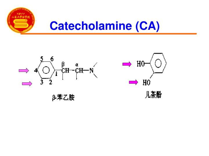 Catecholamine (CA)