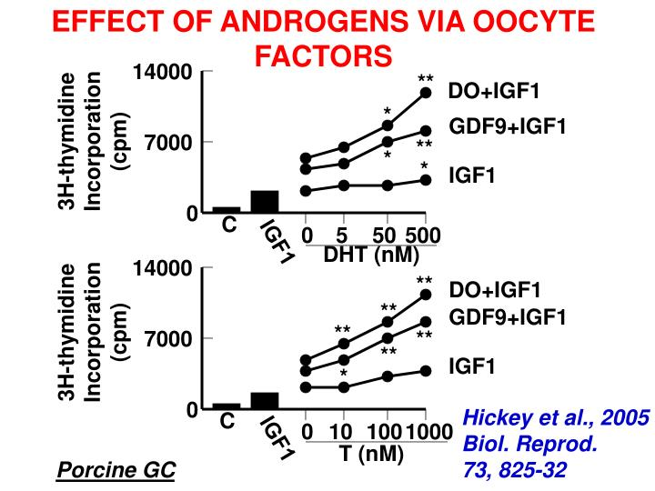EFFECT OF ANDROGENS VIA OOCYTE