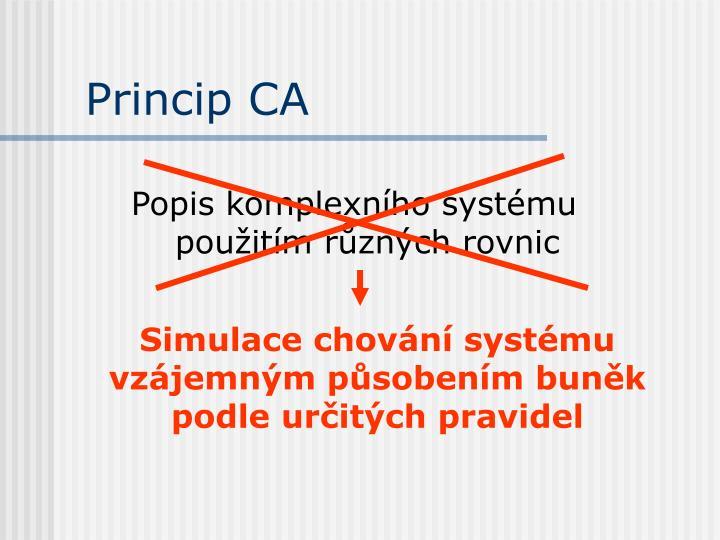 Princip CA