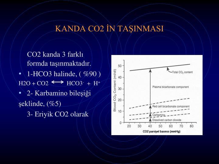 KANDA CO2 İN TAŞINMASI