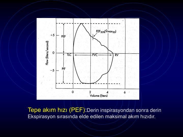 Tepe akım hızı (PEF)