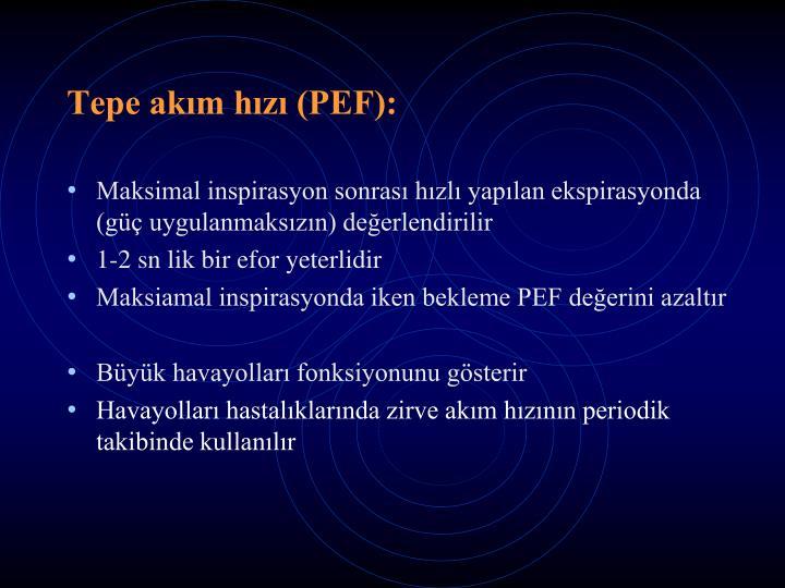 Tepe akım hızı (PEF):
