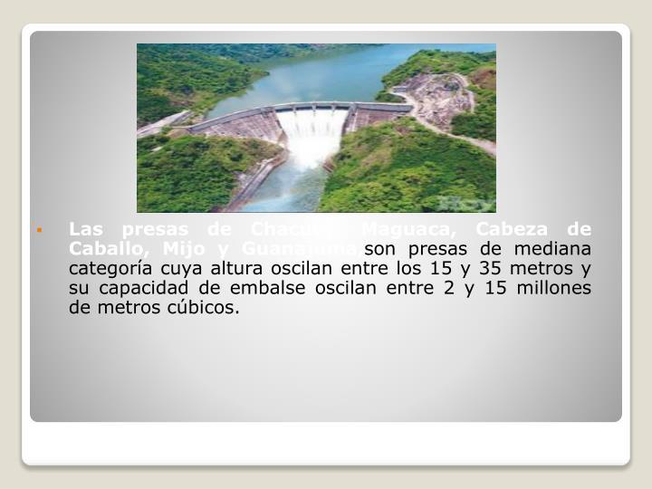 Las presas de Chacuey, Maguaca, Cabeza de Caballo, Mijo y Guanajuma,