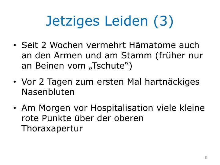 Jetziges Leiden (3)