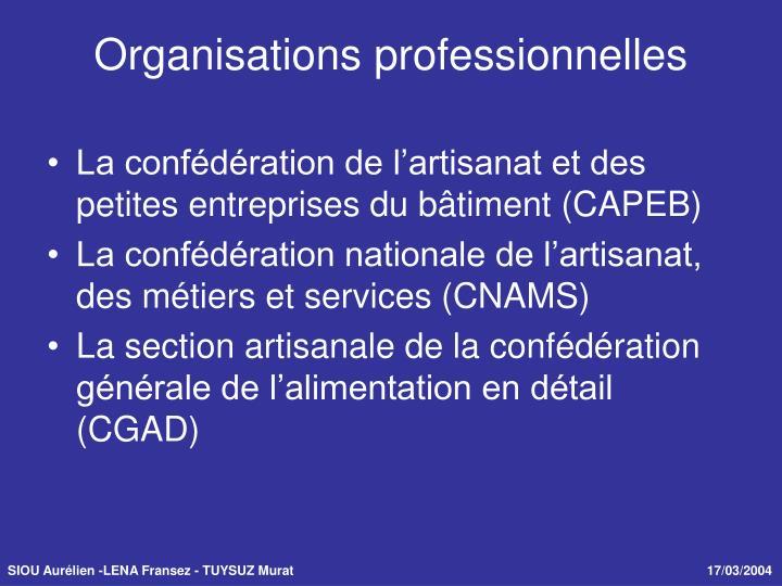 La confédération de l'artisanat et des petites entreprises du bâtiment (CAPEB)