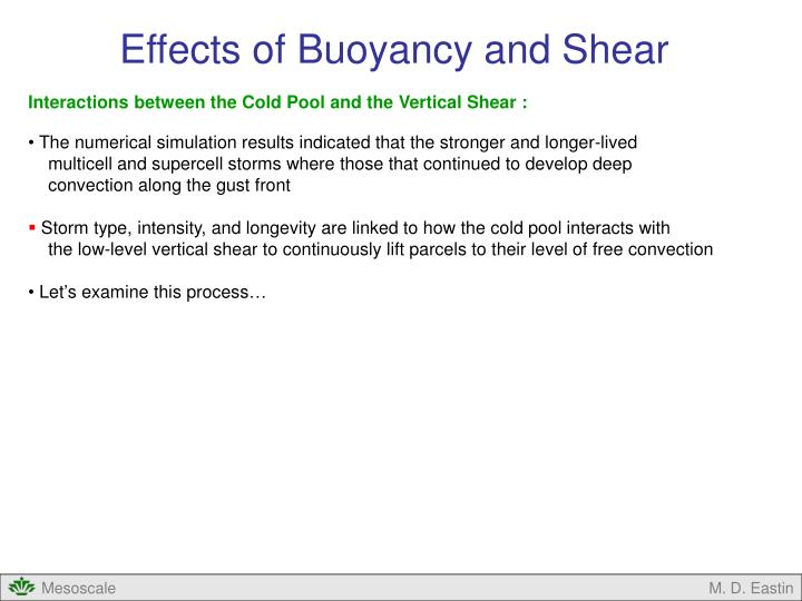 Effects of Buoyancy and Shear