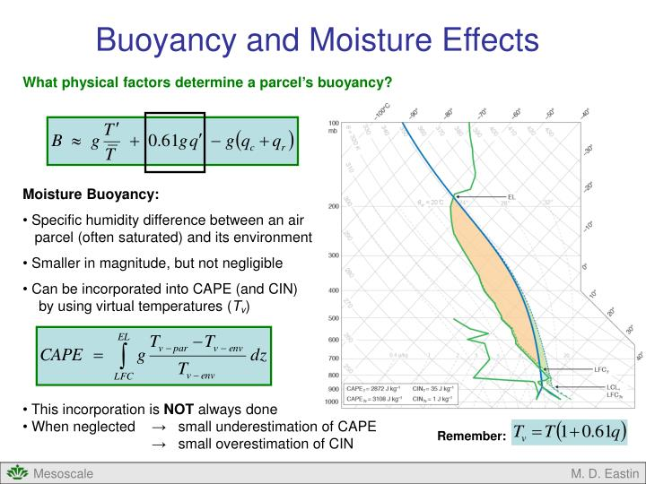 Buoyancy and Moisture Effects