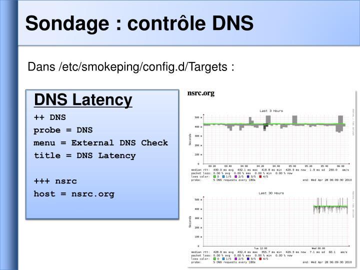 Sondage : contrôle DNS