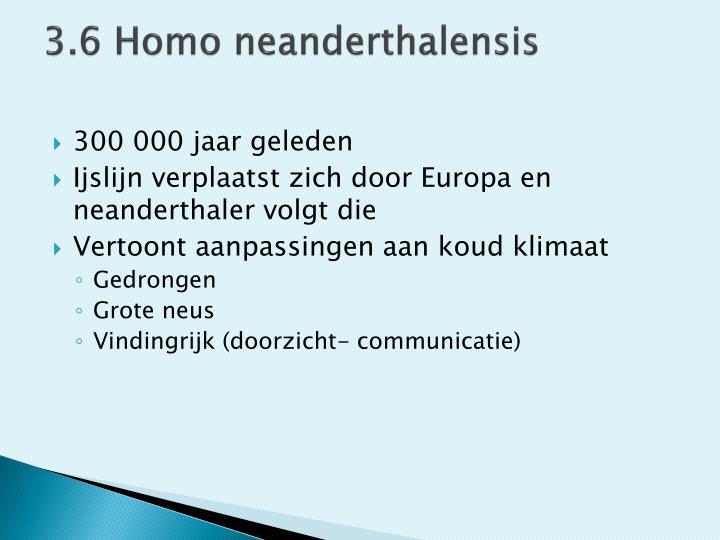 3.6 Homo