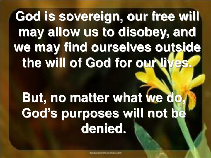 But, no matter what we do, God's purposes will not be denied.