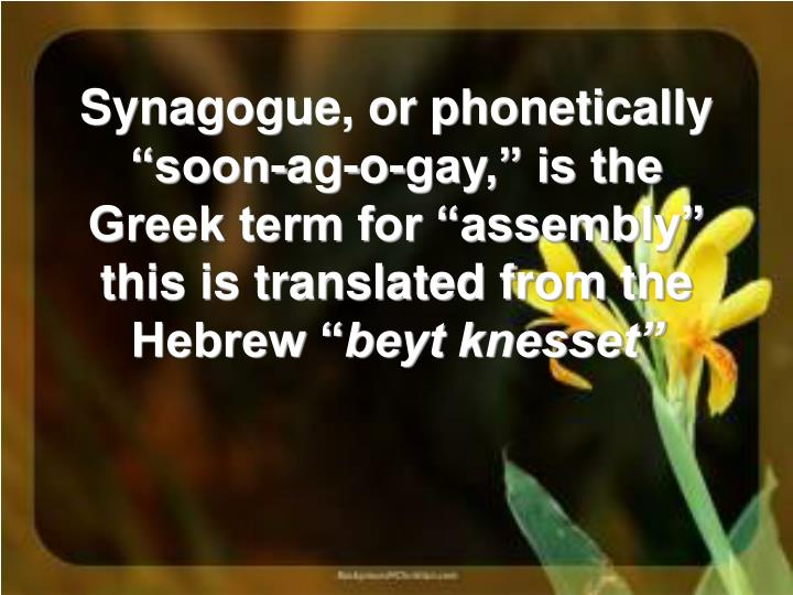 """Synagogue, or phonetically """"soon-ag-o-gay,"""" is the Greek term for """"assembly"""" this is translated from the Hebrew """""""