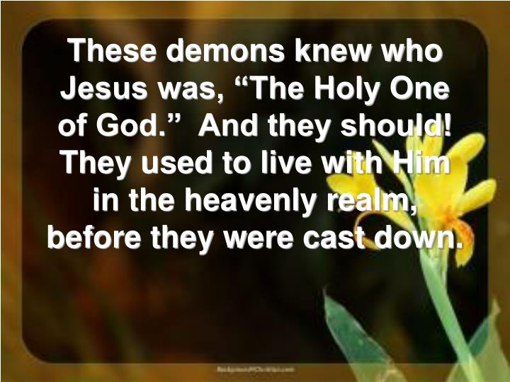 """These demons knew who Jesus was, """"The Holy One of God.""""  And they should! They used to live with Him in the heavenly realm, before they were cast down."""