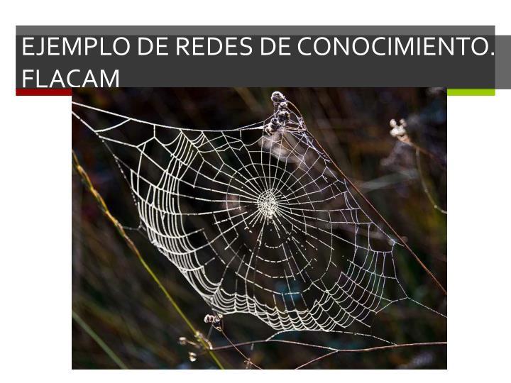 EJEMPLO DE REDES DE CONOCIMIENTO. FLACAM