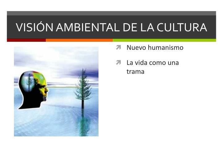 VISIÓN AMBIENTAL DE LA CULTURA