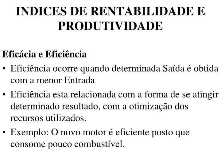 INDICES DE RENTABILIDADE E PRODUTIVIDADE