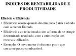 indices de rentabilidade e produtividade1