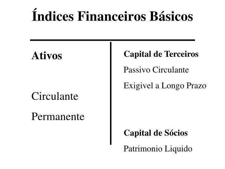 Índices Financeiros Básicos