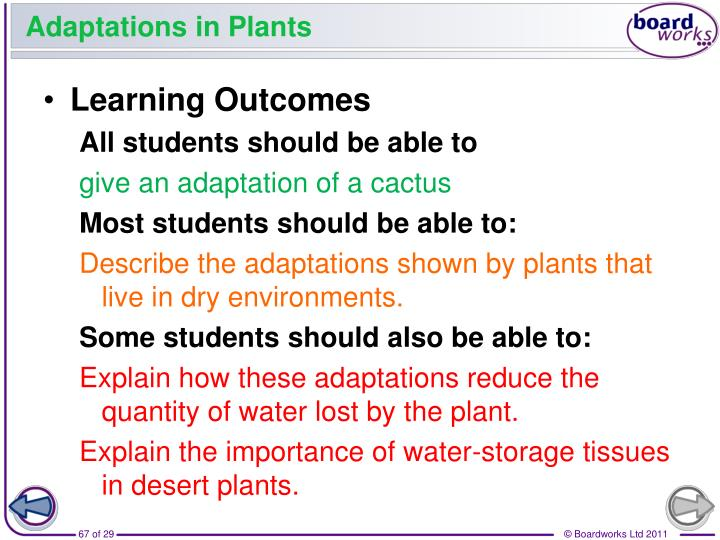 Adaptations in Plants