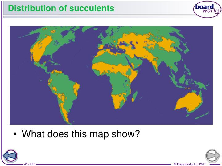 Distribution of succulents