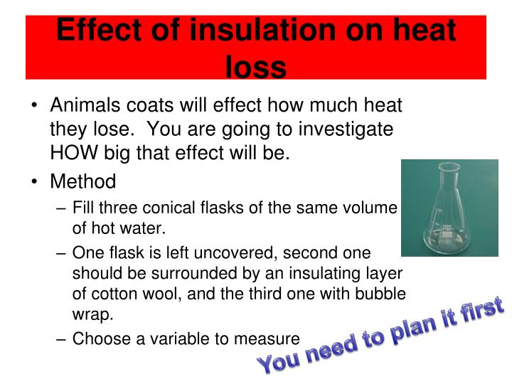 Effect of insulation on heat loss