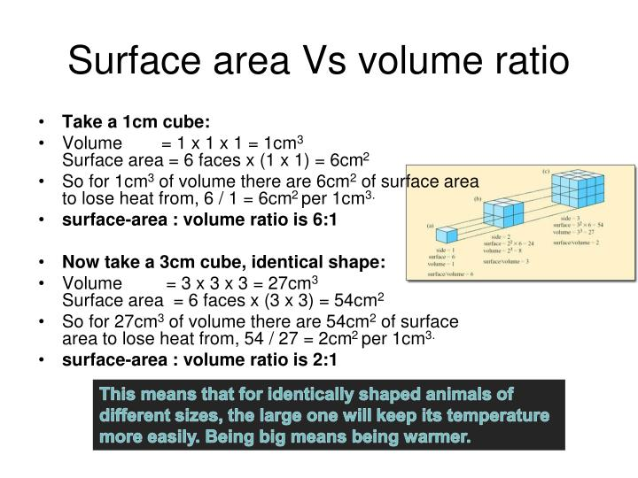 Surface area Vs volume ratio